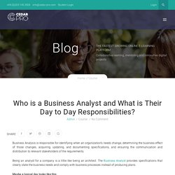 Who is a Business Analyst and What is Their Day to Day Responsibilities?