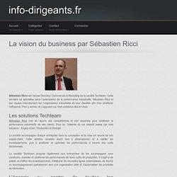 La vision du business par Sébastien Ricci - info-dirigeants.fr