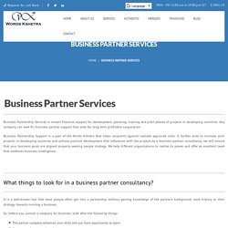 Business Partner Services and Consulting