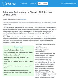 Bring Your Business on the Top with SEO Services – Lunatic Devs