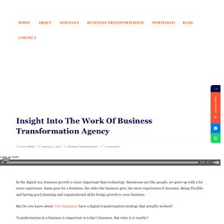 Insight Into The Work Of Business Transformation Agency