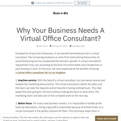 Why Your Business Needs A Virtual Office Consultant?