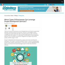Which Types Of Businesses Can Leverage Drupal Development Services?