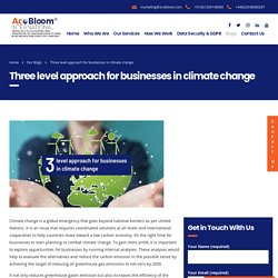 Three level approach for businesses in climate change - AcoBloom International