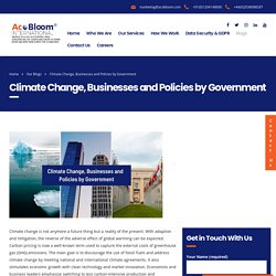 Climate Change, Businesses and Policies by Government - AcoBloom International