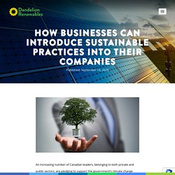 How Businesses Can Introduce Sustainable Practices Into their Companies