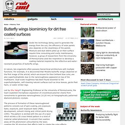 Butterfly wings biomimicry for dirt free coated surfaces