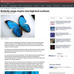 Butterfly wings inspire new high-tech surfaces