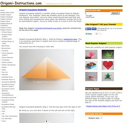 Origami Kusudama Butterfly Folding Instructions