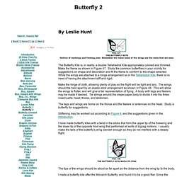 Butterfly Kite 2