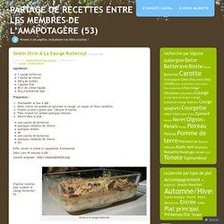 Gratin divin à la courge butternut « Partage de recettes entre les membres de l'Amapotagère (53)