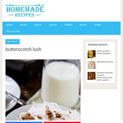 butterscotch lush – Homemade Delicious Recipes
