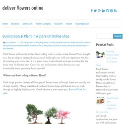 Buying Bonsai Plant In A Store Or Online Shop ~ deliver flowers online