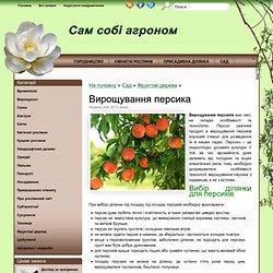 Вирощування персиків