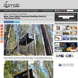 New Tree Cabin Features Rooftop Deck & Top-Down Entry
