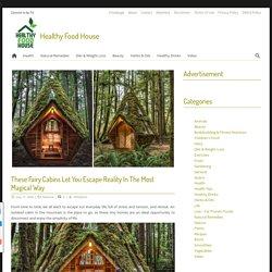These Fairy Cabins Let You Escape Reality In The Most Magical Way
