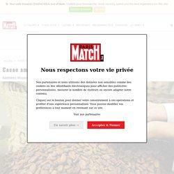 Cacao amer : pénurie de chocolat en 2020 ?
