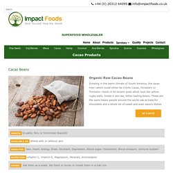 Raw Cacao Beans Information