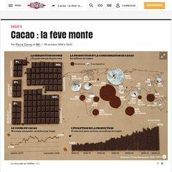 Cacao : lafève monte