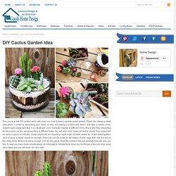 DIY Cactus Garden Idea