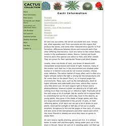 The Cactus Collection Cacti Information
