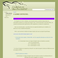 CADRE OFFICIEL - L'anglais en Bac Pro SAPAT