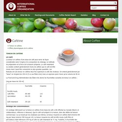 INTERNATIONAL COFFEE CORGANIZATION - Caféine.
