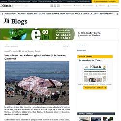 Hoax écolo : un calamar géant radioactif échoué en Californie