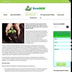 Gypsum Calcium Sulfate Soil Amendment Conditioner - EcoGEM®