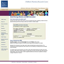 Adult Energy Needs and BMI Calculator - USDA/ARS Children's Nutrition Research Center