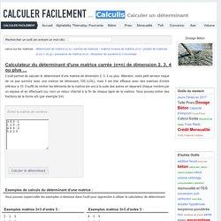 Matrices - Calculette en ligne