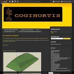 Les calculs de cubatures - Cogihortis