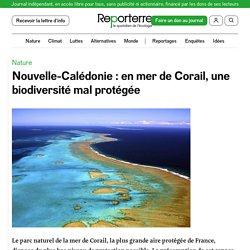 17 fév. 2021 Nouvelle-Calédonie: en mer de Corail, une biodiversité mal protégée