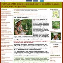 Calendrier récolte de plantes, sauvages ou cultivées
