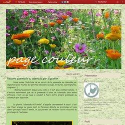 Recette pommade au calendula par digestion - Le blog de pagecouleur