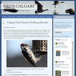 Calgary City Nature Challenge Results - Birds Calgary