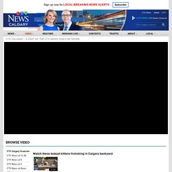 Local News Video - Top Headlines