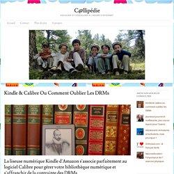 Kindle & Calibre ou comment oublier les drm - C@llipédieC@llipédie