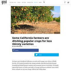 Some California farmers are ditching popular crops for less thirsty varieties