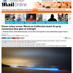 California dreaming? Waves at popular surfer beach glow bright blue at midnight