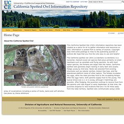 Home Page - California Spotted Owl Information Repository