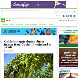 FRESH FRUIT PORTAL 26/06/20 California agriculture's direct impact from Covid-19 estimated at $8.6B