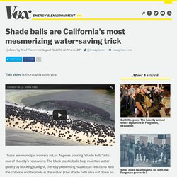 Shade balls are California's most mesmerizing water-saving trick