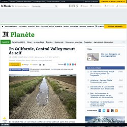 En Californie, Central Valley meurt de soif