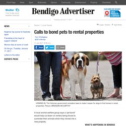 Calls to bond pets to rental properties
