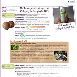 Fiche technique huile végétale de Calophylle Inophyle