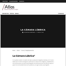 La Cámara Lúbrica - Revista ATLAS