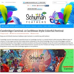 Cambridge Carnival: A Caribbean Style Colorful Festival
