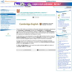 The Cambridge English Certification, what for ?- Anglais LP