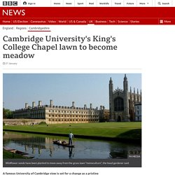Cambridge University's King's College Chapel lawn to become meadow